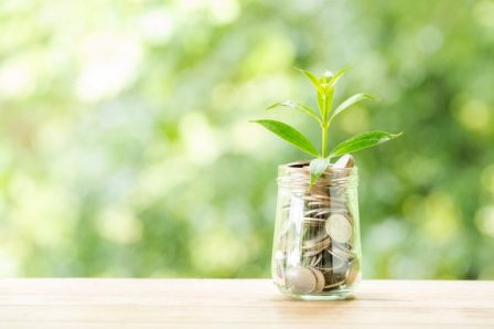 plant-growing-from-coins-glass-jar-blurred-nature